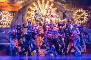 Teatro superga - Cats